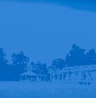 Mahua Kothi (Bandhavgarh National Park)